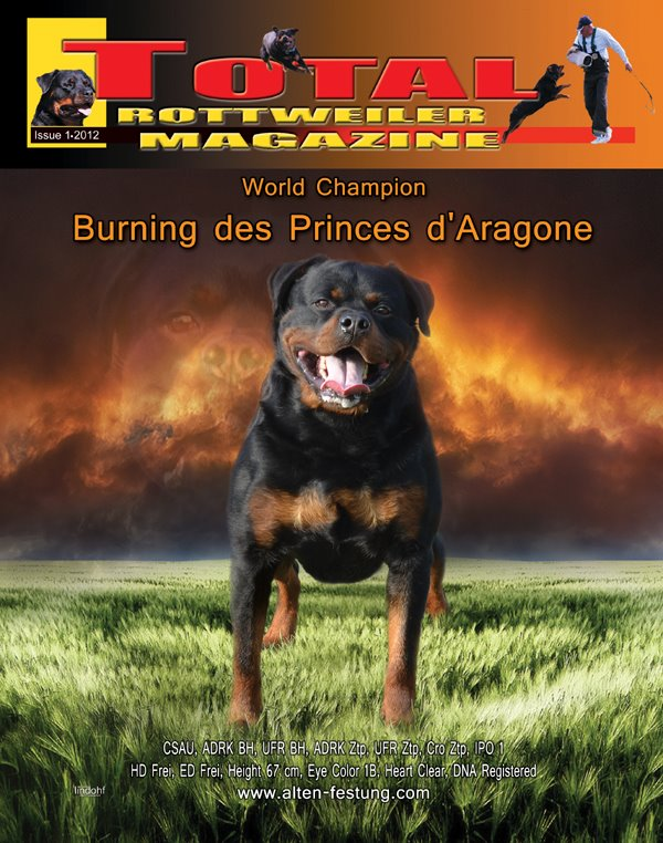 Burning des Princes d'Aragone